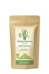 BIO pšenična trava v prahu Planet BIO 100 g