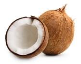Kokosov oreh po kom