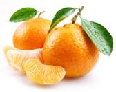 Klementine po kg
