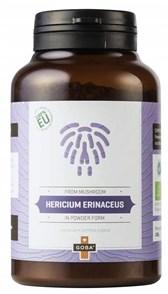BIO Resasti bradovec (Hericium erinaceus) v prahu 100g