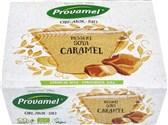 BIO sojin desert karamela Provamel 4x125g