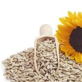 Sončnična semena po kg