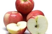 BIO jabolka sorta Sansa po kg