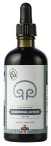 Tinktura gobe Reiši (Ganoderma lucidum) 50 ml